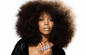 Erykah Badu Under Fire for Controversial Comments